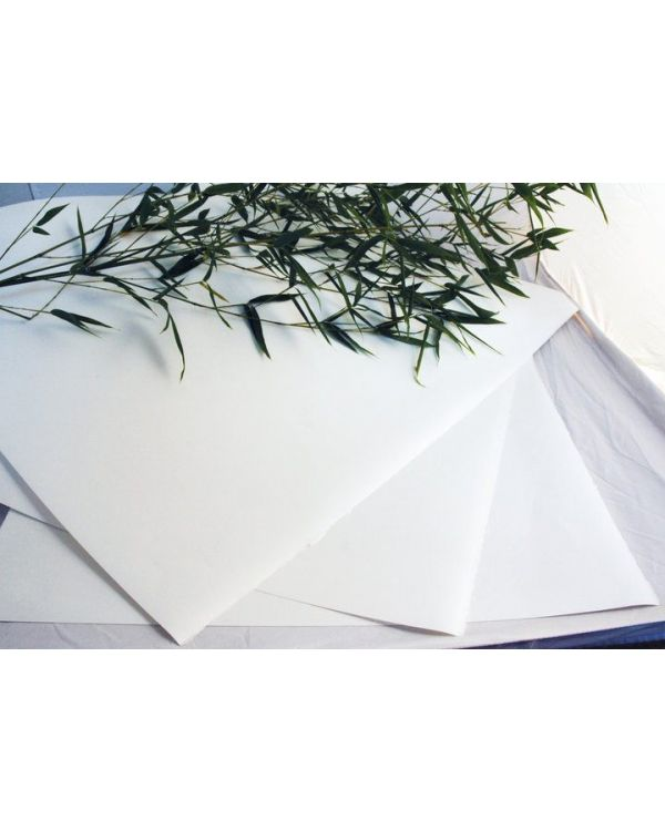 * Bamboo Watercolour - 250gsm 56x76cm 2 deckled edges