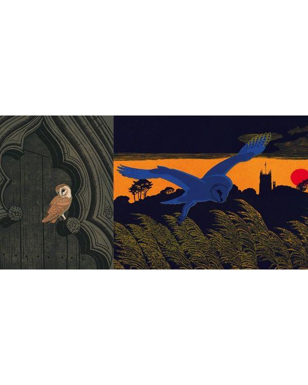 The Elegant Fowl Parliament of Owls - HB Alan Marshall